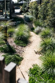 Front Garden Decor Ideas- Enhance Your Front Entrance With These ideas! – Page 9934179584 – Gardening Decor Backyard Garden Design, Garden Landscape Design, Backyard Landscaping, Landscaping Ideas, Landscaping Borders, Coastal Landscaping, Australian Garden Design, Australian Native Garden, Australian Bush