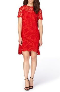 90499c63 Tahari Corded Lace Swing Dress available at #Nordstrom Romantic Lace, Lace  Dress, Dress