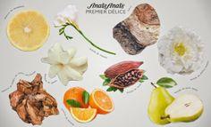 Photos, Pictures, Fragrance, Perfume, Html, Blogging, Art, Design, Beauty