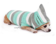 Diy Crafts - Warm handmade knit dog sweater hoodie in cyan baby pastel color. Soft and comfortable Dog Hoodie, chihuahua clothes, dachshund clothes, d Dachshund Clothes, Chihuahua Clothes, Cute Dog Clothes, Cute Chihuahua, Crochet Dog Clothes, Crochet Dog Sweater, Crochet Hoodie, Dog Hoodie, Dog Shirt