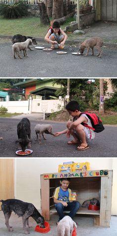 #4 Um Garoto De 9 Anos Criou Um Abrigo Para Cuidar De Animais Em Sua Garagem