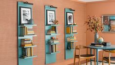 Wall-hung lighted display shelves