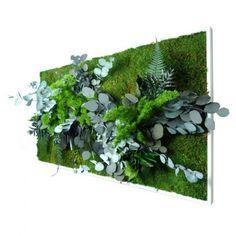 decoration jungle urbaine   Cadre végétal vert - Achat/Vente cadres végétaux verts - Tableau ...