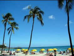 "Hawaii ""Waikiki Beach""   http://www.surge365.com/destinationRelaxation412"