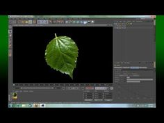 Cinema 4D Create a leaf fast and easy - YouTube