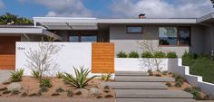 Xeriscape with modern-style exterior