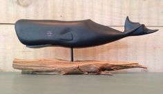 Small Sperm Whale
