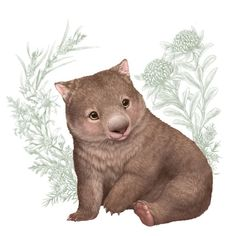 Friends Illustration, Illustration Art, Animal Illustrations, Illustrations Posters, Wombat, Cute Animal Drawings, Cute Drawings, Baby Animals, Cute Animals