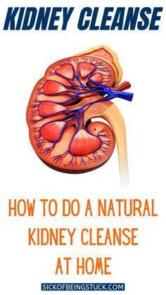 A natual kidney cleanse detox may be just what your body needs. Review the warning signs, the how-to steps, and all natual recipes for a healthier you. Turmeric Curcumin Benefits, Turmeric Pills, Turmeric Tea, Turmeric Extract, Natural Colon Cleanse Detox, Kidney Detox Cleanse, Turmeric Tablets, Kidney Health, Natural Cleaning Products
