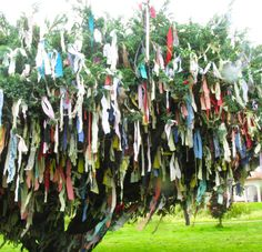 Make a Wishing Tree/Branch with ribbons and scraps of cloth - each one symbolises a wish/prayer - you could even write out what they are on each ribbon if you wanted. Outdoor Art, Outdoor Decor, Prayer Stations, Buddhist Traditions, Bottle Trees, Crystal Garden, Stick Art, Prayer Flags, Found Object Art