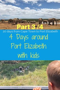 South Africa with Kids - Eastern Cape : This is Part 3 of 4 / Full Itinerary list when spending 4 days around Port Elizabeth. Wildlife game drives and more. Travelling South Africa with kids 4 days in Port Elizabeth Port Elizabeth South Africa, Sa Tourism, Africa Destinations, Travel Destinations, Road Trip With Kids, Africa Travel, Morocco Travel, Family Travel, Adventure Travel