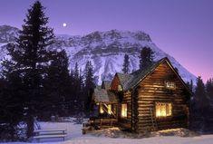 #casanafloresta #cabin #cabininthewoods #cozy #inverno #winter #noite #night #cladafloresta