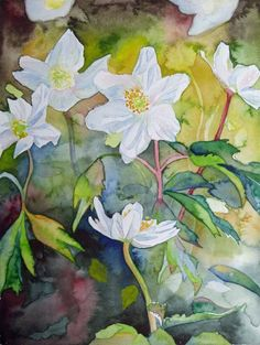 Spring Awakening (c) #watercolor with anemones of Frank Koebsch, 30 x 40 cm; if you feel interested in how the picture is created, use this link http://frankkoebsch.wordpress.com/2012/01/19/fruhlingserwachen-in-aquarell/