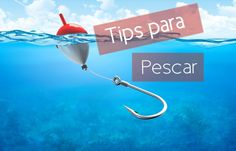 tips para pescar, cebos y carnadas