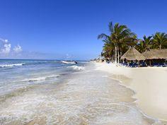 Echa un vistazo a los videos y fotos de Sandos Caracol Eco Experience Resort. Descubre las playas de arena blanca y aguas turquesas de Playa del Carmen…