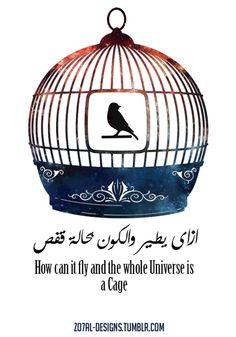إزاي يطير والكون بحاله قفص  - How can it fly and the whole universe is a Cage اغنية افتح بيبان القلب كتابه عبد الرحمن الابنودى