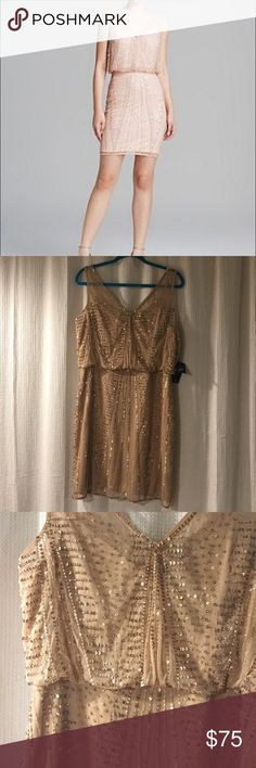 Adriana Papell Beaded Blouson Cocktail Dress Stunning blush/rose gold, knee-length, beaded cocktail dress with blouson top. It is missing a few sequins, but it isn't noticeable at all. Comes with extra sequins and beads In perfect condition. New with tags. Beautiful color for spring or the holidays. Adrianna Papell Dresses