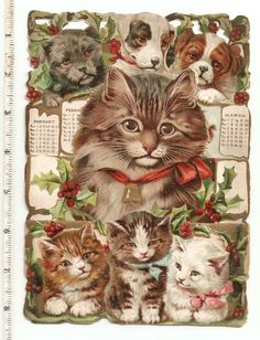 Victorian Raphael Tuck Kittens Cat Calendar Christmas Holly Card Chromo Antique Scrap
