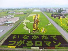 Огромные живые картины «растут» на рисовых полях в Японии. Ежегодно в апреле жители встречаются и решают, что посадить в этом году. Перед посадкой фермеры намечают проекты на компьютерах, чтобы выяснить, где и как сажать рис. В 2007 году более 700 человек помогали высаживать конструкцию. В Инакадате поля занимают площадь около 15 000 кв. метров. Художественные работы на рисовом поле лучше всего смотреть в сентябре.