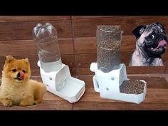como fazer Bebedouro e comedouro automático com garrafa pet caseiro muito fácil e rápido - YouTube Diy Projects For Dog Lovers, Rabbit Cages Outdoor, Rabbit Feeder, Ant Crafts, Goat Shelter, Chicken Nesting Boxes, Dog Store, Diy Furniture Projects, Cardboard Crafts