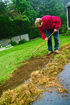 How to prep damaged lawn areas for spring seeding.