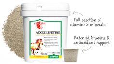 Accel Lifetime - Horse Multi-Vitamin Supplements from SmartPak Equine