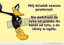 idiota grafika w We Heart It Positive Quotes, Motivational Quotes, Weekend Humor, Just Smile, Inspirational Thoughts, Man Humor, Wise Words, Quotations, Funny Jokes