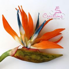 {This gorgeous Bird of Paradise is featured on Creations by Edith}