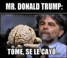 Resultado de imagen para memes de donald trump
