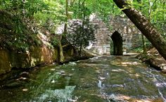 14 epic hiking spots in SC: 12. Poinsett State Park (Wedgefield, SC)