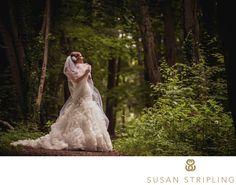 Fonthill Castle Wedding Photographer