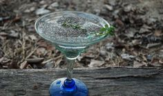The long and harsh winter has Tanya and her family wondering what spring will bring when it finally arrives. In the meantime, a chia drink stands in for her favorite post-winter vernal pools.