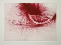 Jake Muirhead - Red Lemon - Drypoint black blob and dots across Drypoint Etching, Engraving Printing, Etching Prints, A Level Art, Print Artist, Botanical Art, Printmaking, Watercolor Art, Illustration Art