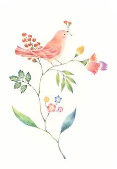 Art And Illustration, Floral Illustrations, Watercolor Illustration, Cute Bear Drawings, Art Drawings, Watercolor Bird, Watercolor Paintings, Cute Birds, Chalk Art