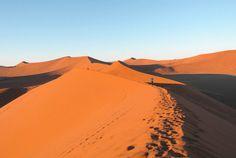 Road trip en Namibie, entre animaux sauvages et désert du Namib Information Center, Travel Information, Road Trip, Destinations, Travel Nursing, Photos Voyages, Belle Photo, Us Travel, Safari