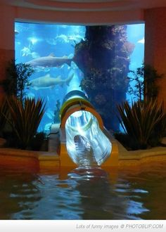 Aquarium water slide, Golden Nugget, Las Vegas