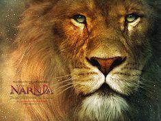 Aslam, the Lion.