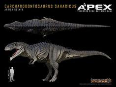 Carcharodontosaurus saharicus by Herschel-Hoffmeyer on DeviantArt
