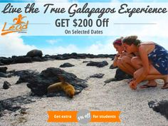 Galapagos Island Hopping Volunteer Experience with LEAD Adventures South America Amazon Animals, Lead Adventure, Galapagos Islands, Cruise Travel, Great Deals, Ecuador, South America, Peru, Wildlife