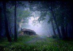 The Cottage in the Woods - Scottish croft and Highlands woods Forest Cottage, Storybook Cottage, Cottage In The Woods, Forest House, Cottage House, Grandma's House, White Cottage, Cottage Living, Digital Foto