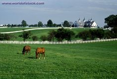 Lexington Kentucky, USA