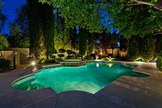101 South Royal Ascot Drive Las Vegas, NV 89144 Agent: Diane Varney Pool