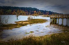 The boardwalk at Nisqually Wildlife Refuge near Olympia, Washington, affords a spectacular view of fall foliage across the lake. This scenic walk provides a wonderful visual experience for the visitor, and showcases just a few of the natural wonders that abound in this far west portion of the United States.