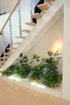 Indoor Garden Office and Office Plants Design Ideas For Summer - Debajo de escal. Indoor Garden Of Office Plants, Garden Office, Interior Garden, Interior Plants, Garden Ideas Inside The House, Pagoda Garden, Home Stairs Design, Home Design, Stair Decor