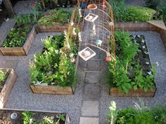 raised garden with arbor that would be perfect for growing string beans, or peas...