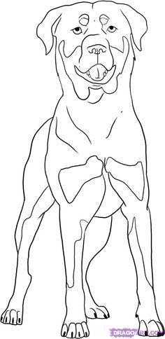 rottweiler coloring pages - rottweiler pattern use the printable outline for crafts