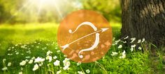 You are going to be with your eyes on the clock more than ever this March but a lot … http://www.thehoroscope.co/horoscope-articles/sagittarius-Sagittarius-March-2017-Monthly-Horoscope-269.html