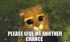 PLEASE GIVE ME ANOTHER CHANCE | Puss in Boots | Troll Meme Generator