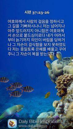 Daily Bible Inspiration, Great Whale, Ephesians 1, New Bible, Abundant Life, Bible Quotes, Faith, Christian, Sayings