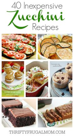 40 Inexpensive Zucchini Recipes- a collection of some of the best zucchini recipes. So many delicious ideas!